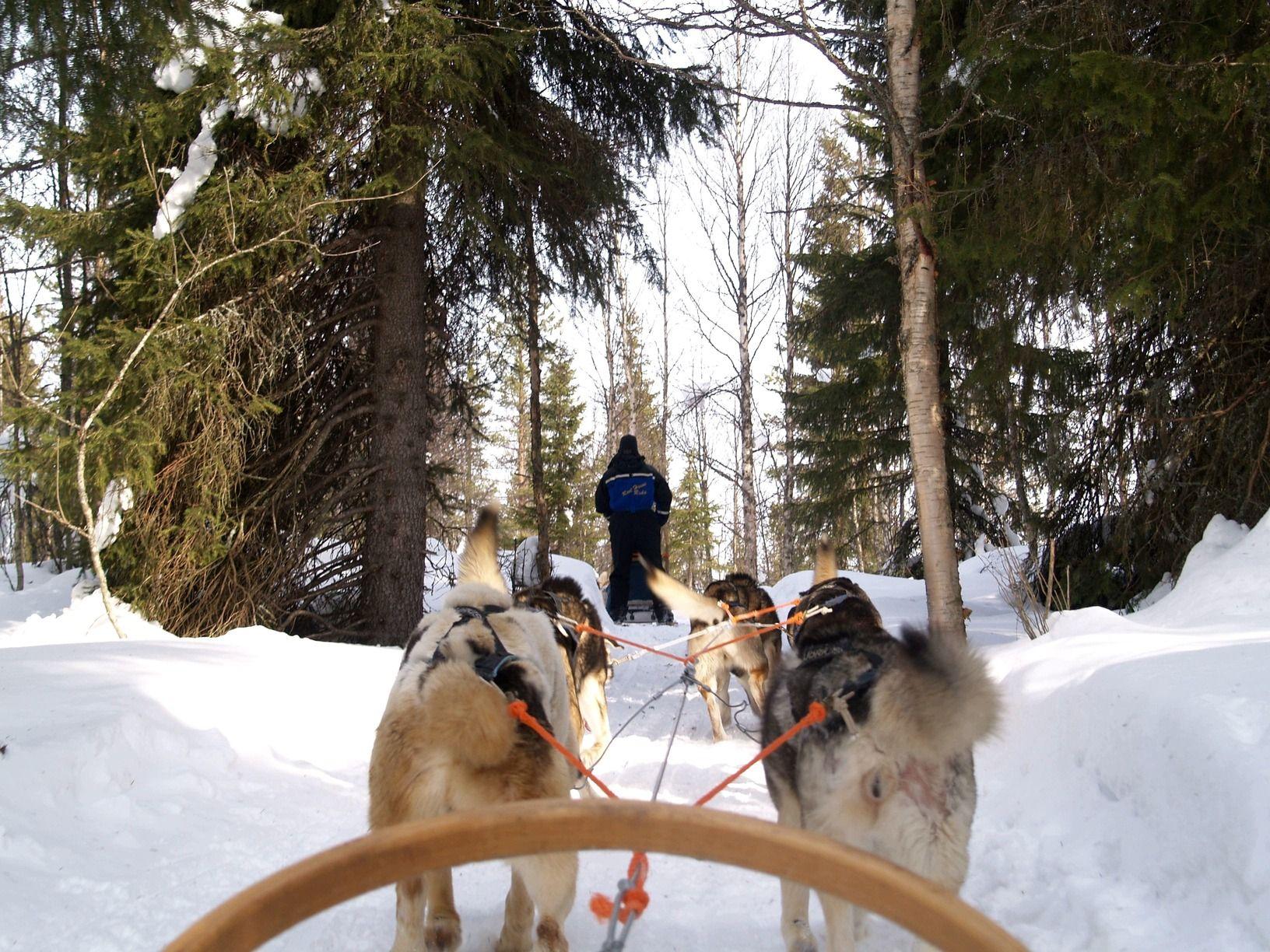 viaje Finlandia niños familia