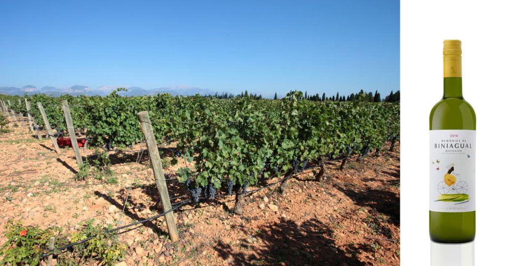 Ruta vino Mallorca
