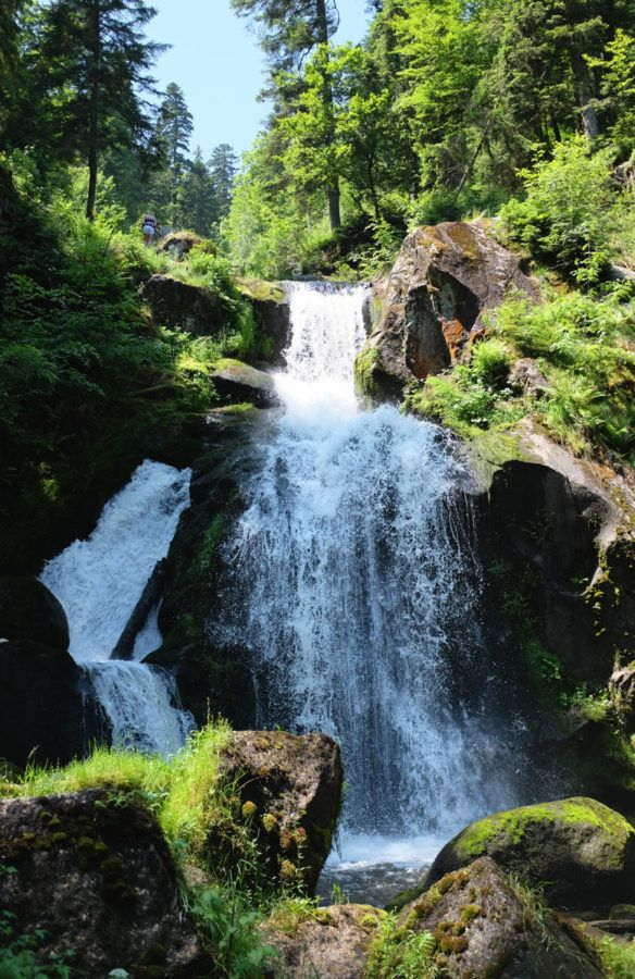 Selva Negra, naturaleza, viajes con niños, viajes en familia, viajes a Europa