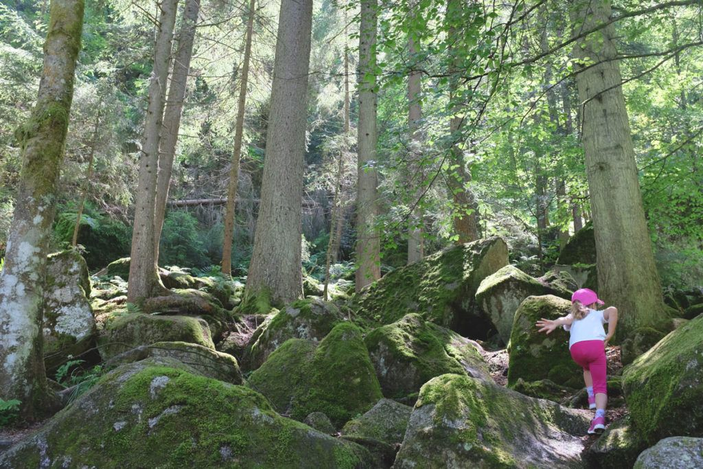Selva Negra Alemania niños viajes familia