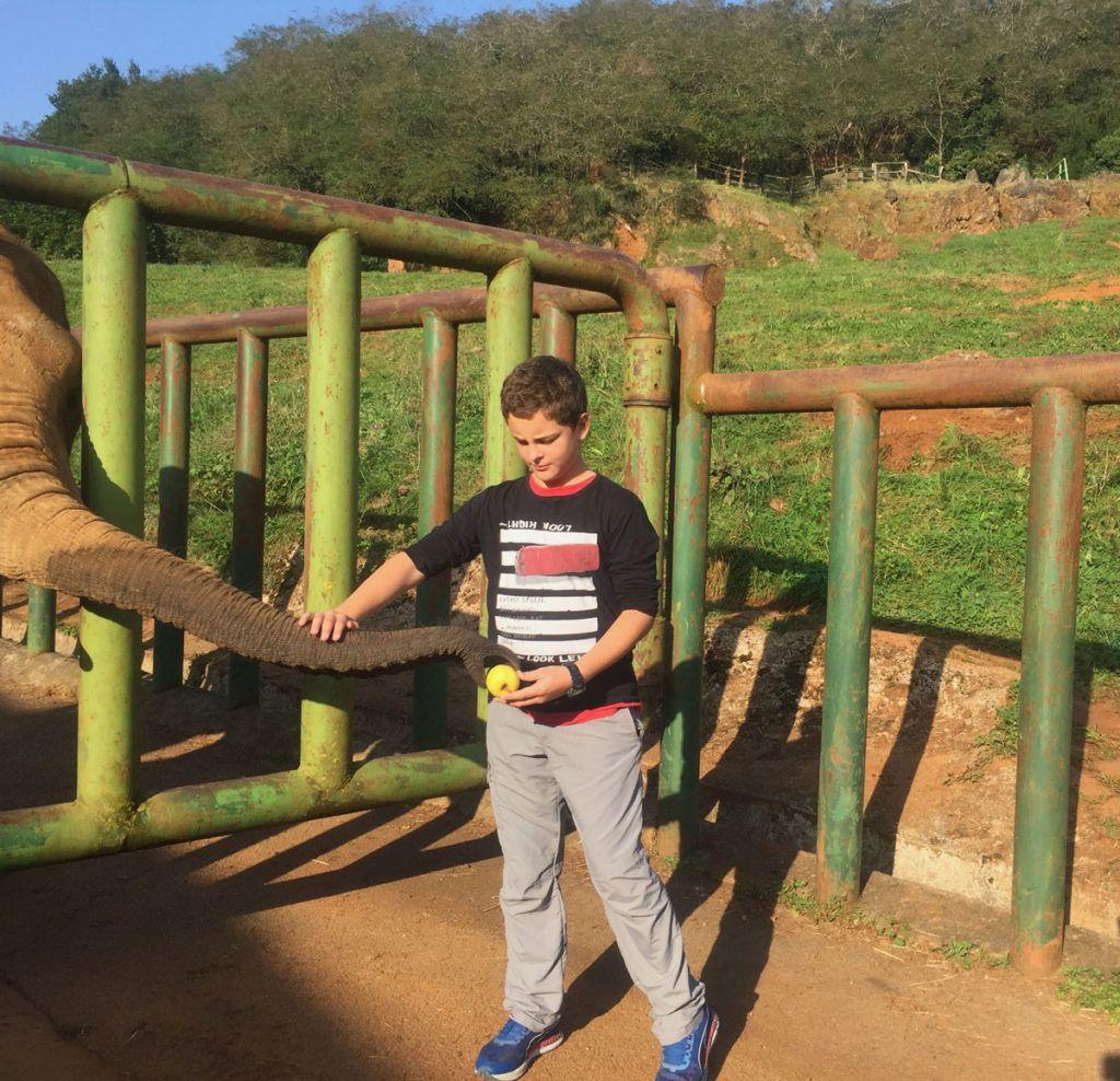 Cantabria animales viajes niños