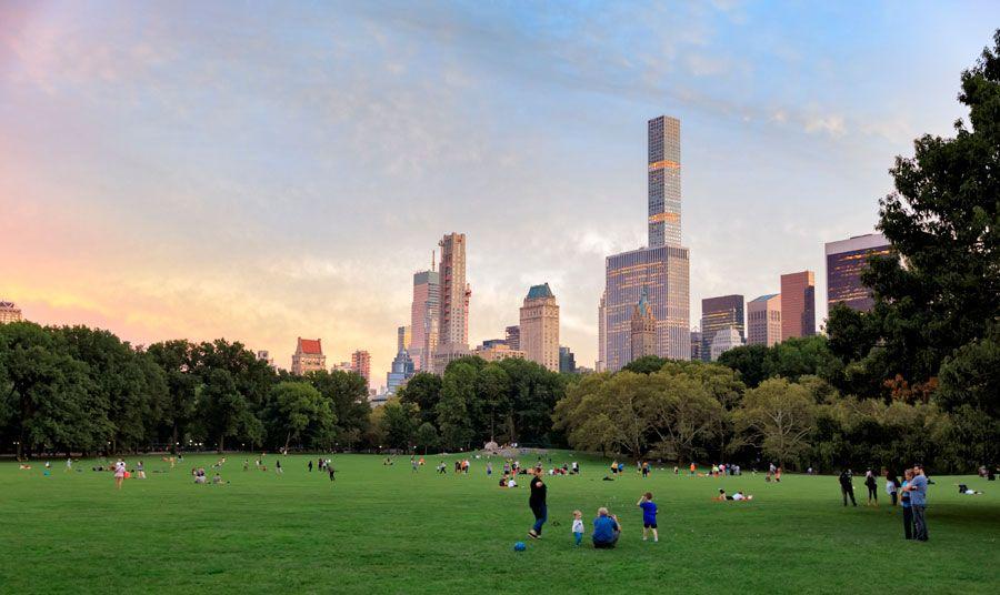 Pradera de Central Park