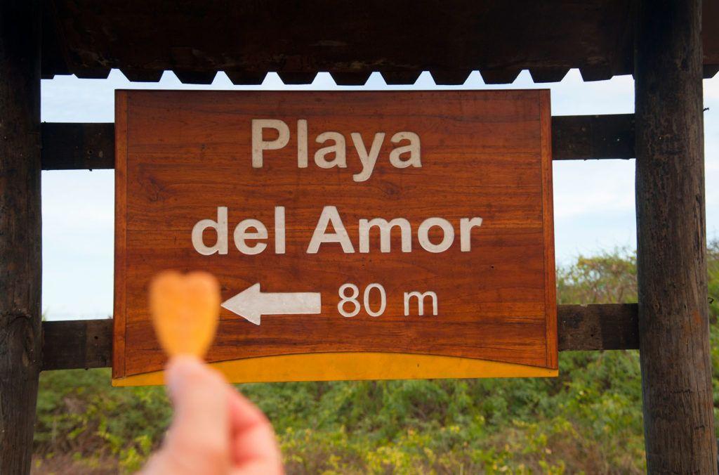 playa amor isla isabela galapagos