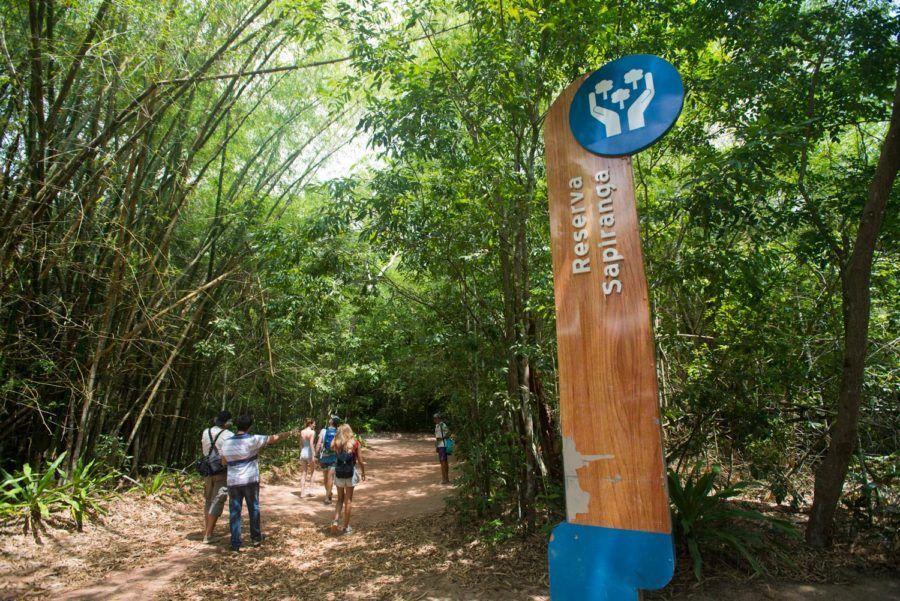 caminatas trekking reserva sapiranga bahia brasil