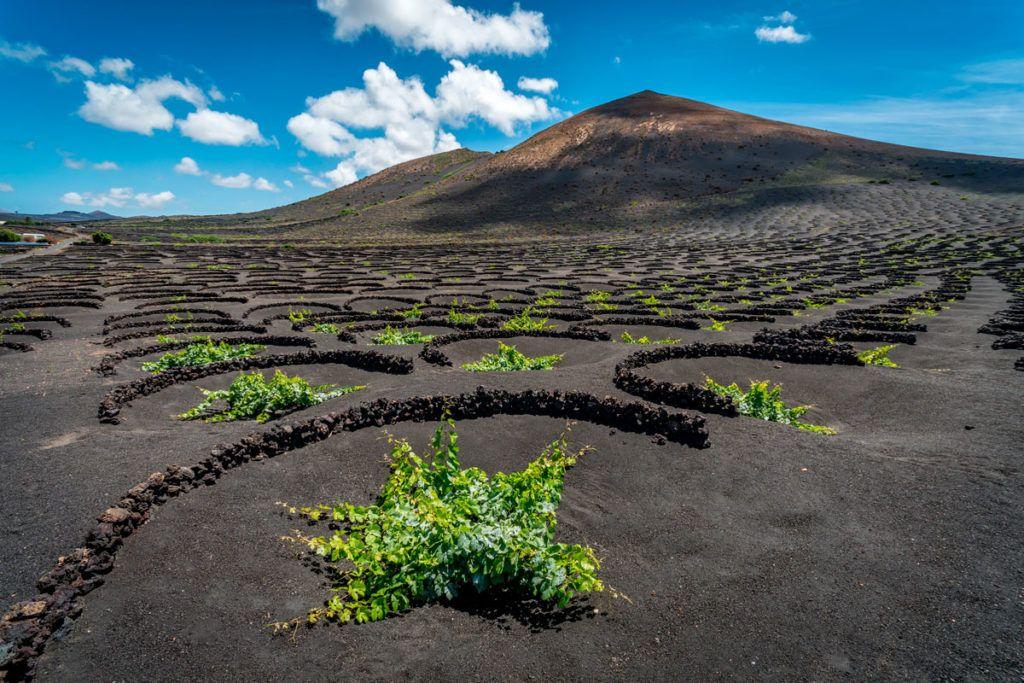 paisaje vinos isla viajes naturaleza