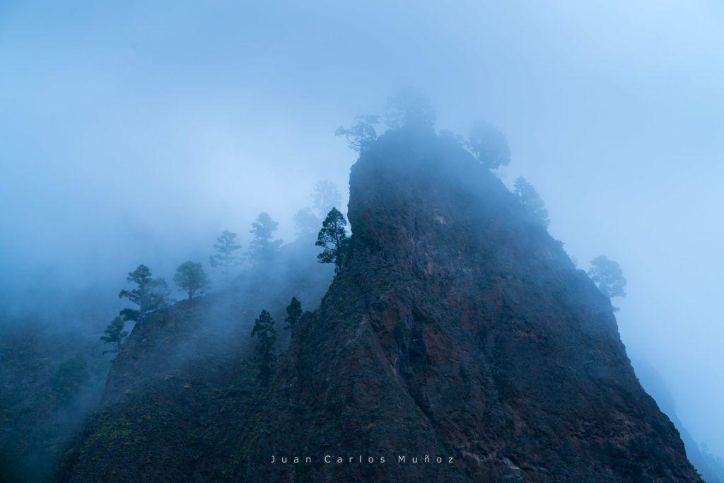 La Cumbrecita, Caldera de Taburiente National Park, Island of La Palma