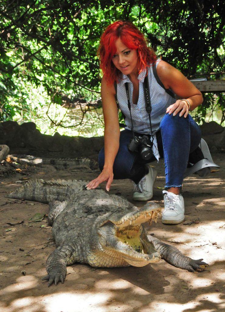 cocodrilos en kachikally, viajes mujeres a gambia, que hacer en gambia, viajar a gambia sola