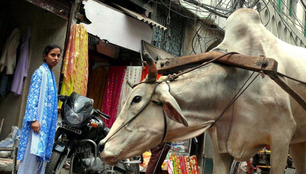 qué ver en delhi, viajar a india, mujeres solas en india