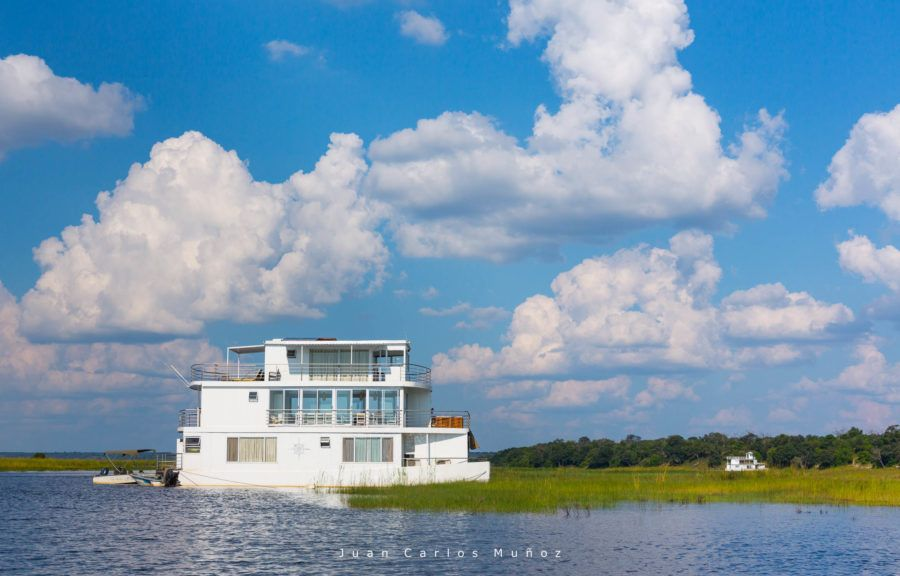 crucero rio chobe, fauna de africa, safaris en bostuana, viajes naturaleza, viajes para mujeres