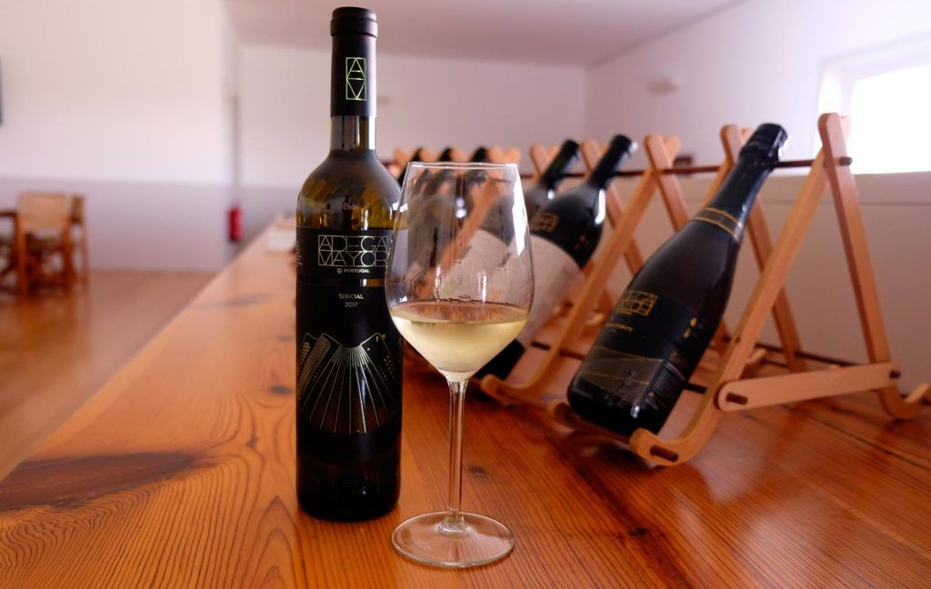 bodega adega mayor, vinos de alentejo, viaje mujeres portugal