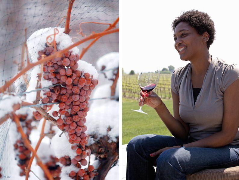 enoturismo en canada, viajes a canada, vinos en niagara