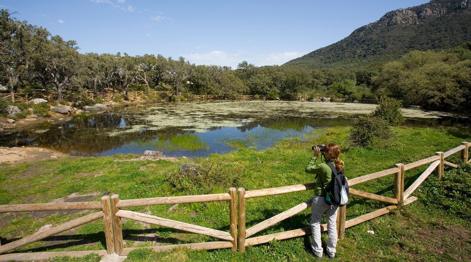 ecoturismo en andalucia, rutas en parque alcornocales, viajes mujeres andalucia