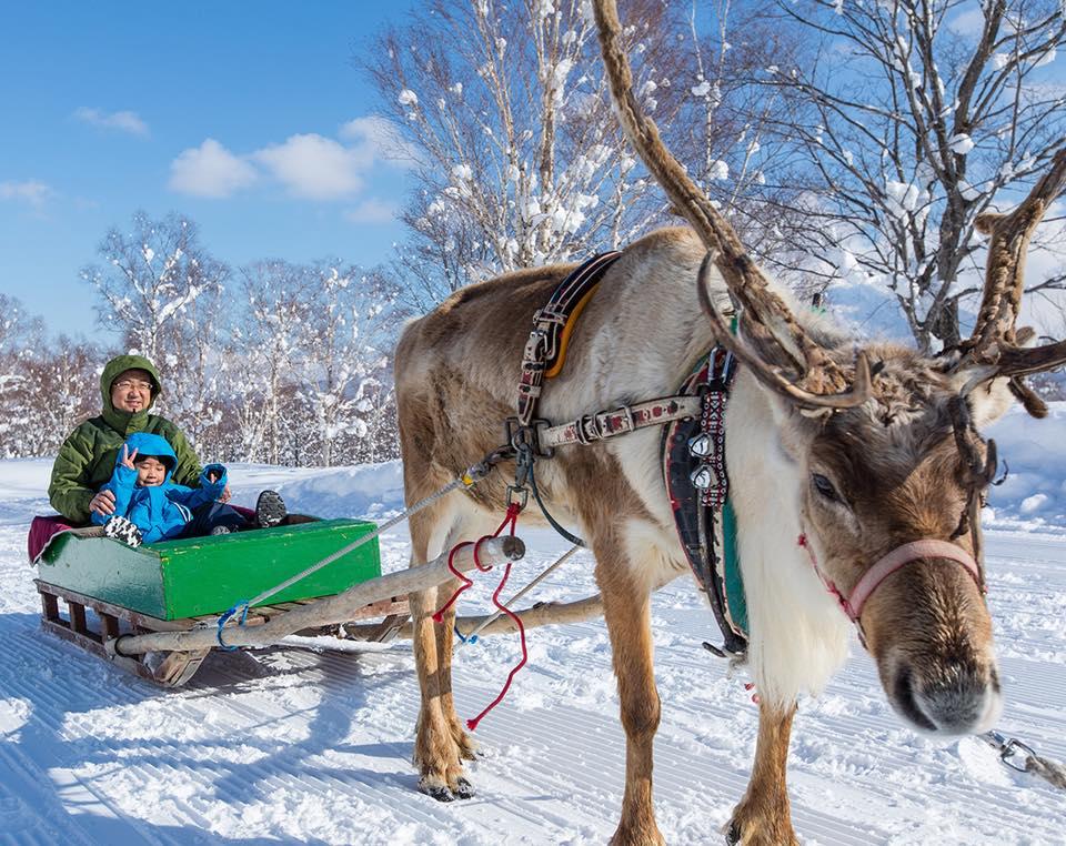 esquiar en Niseko, mejores estaciones esqui del mundo, viajes de esqui para mujeres
