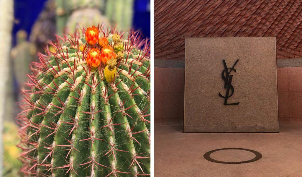 Jardines Majorelle y Museo de Yves Saint Laurent