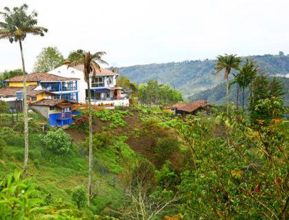 Viajes a America Latina, Viajes con amigas, ruta del cafe
