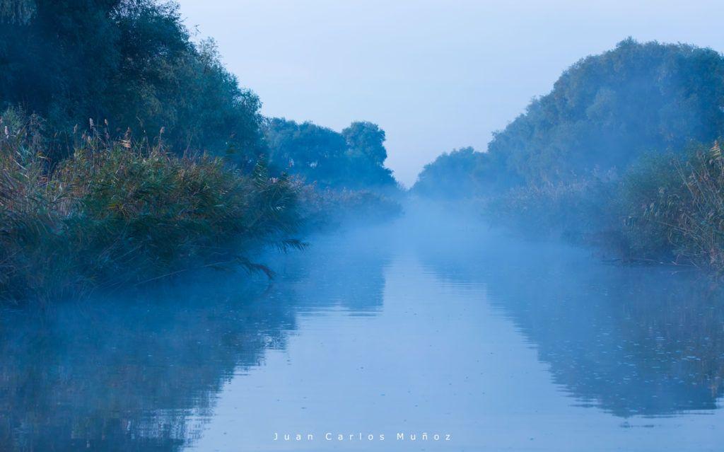 navegar en el delta del danubio, visitas en delta danubio