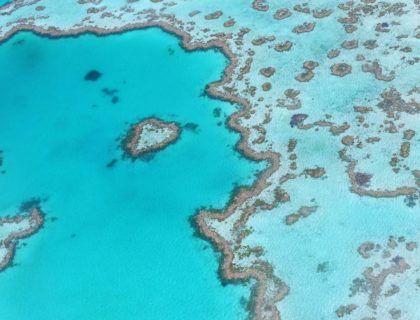 gran barrera coral, viaje australia