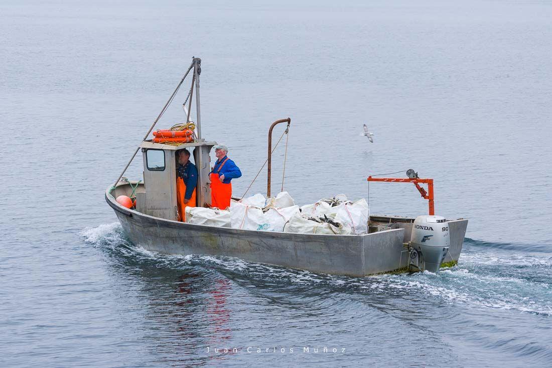 pescadores islas shetland,