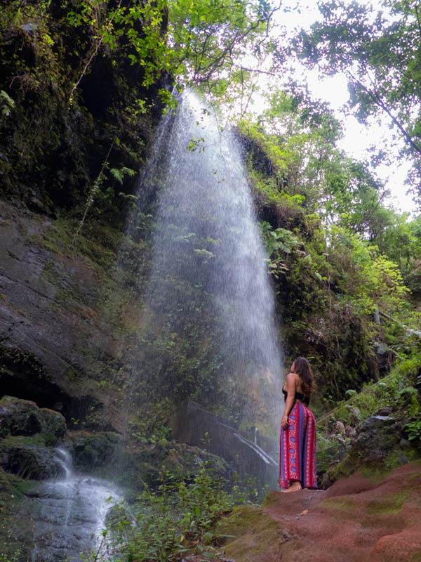 bosque de los tilos, cascadas la palma, viaje canarias