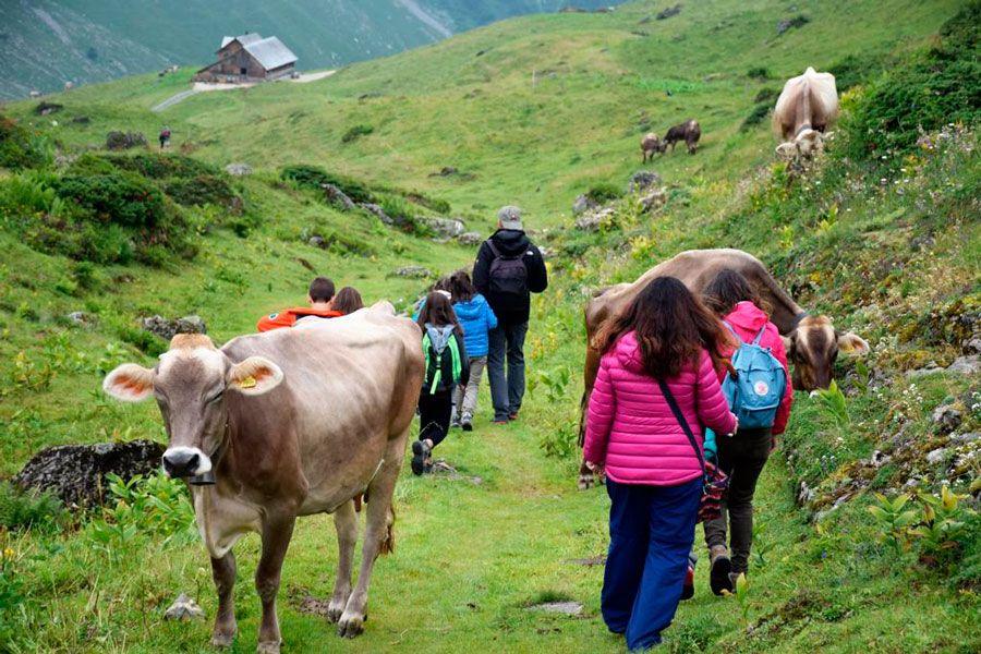 senderismo lago trubsee, viajes familiares suiza