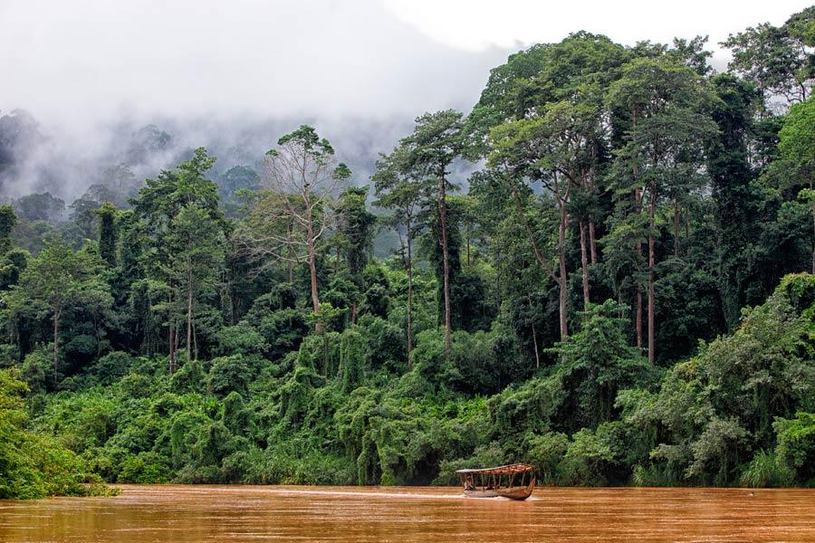 Parque Nacional de Taman Negara, islas malasia