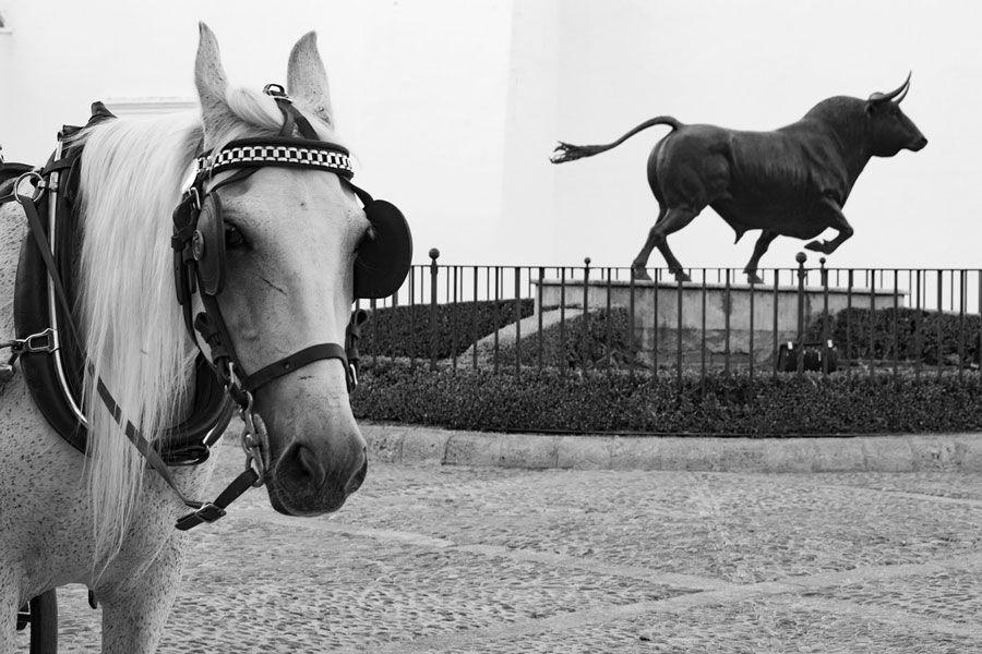 escultura toro ronda