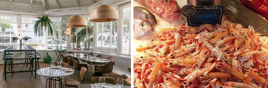 restaurante lobito de mar, donde comer en marbella