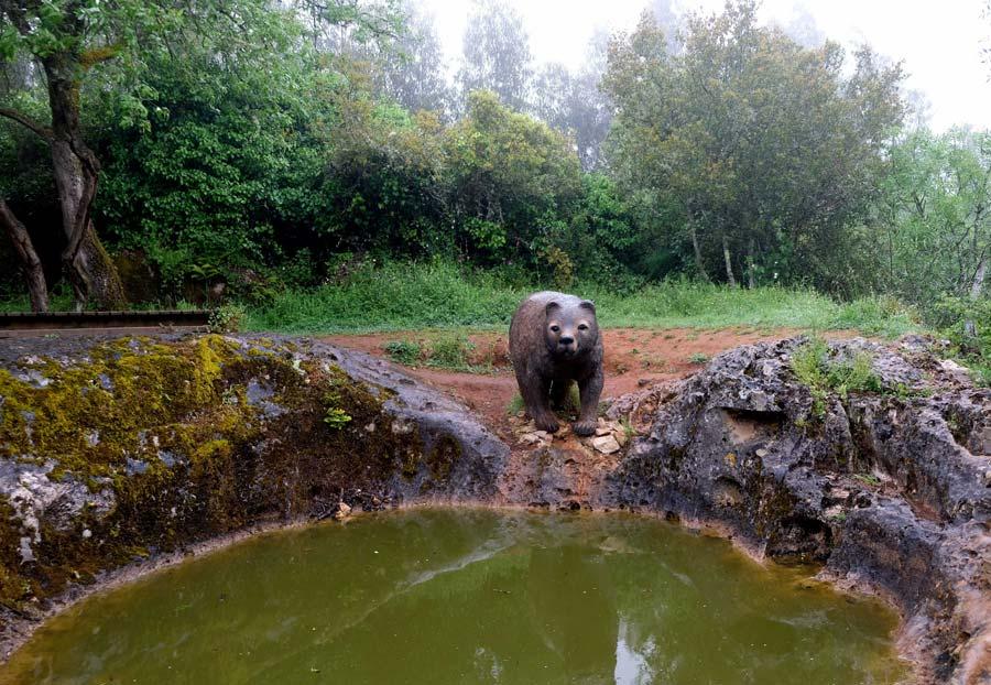 Eco Parque sensorial de Pia do Urso