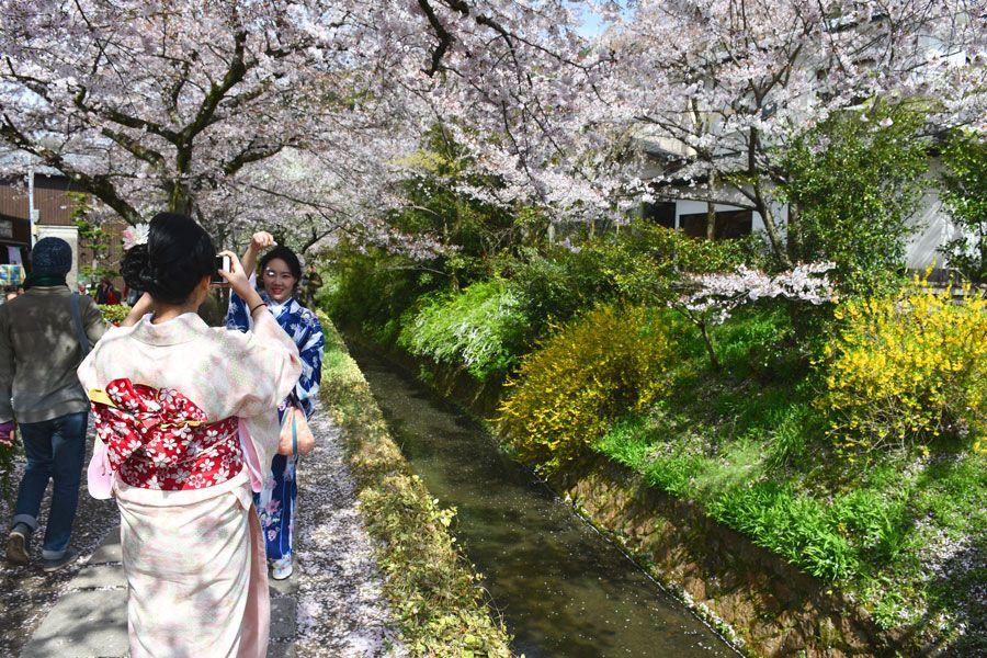 viajes a Japon, viajes a Asia, cuando viajar a Japón