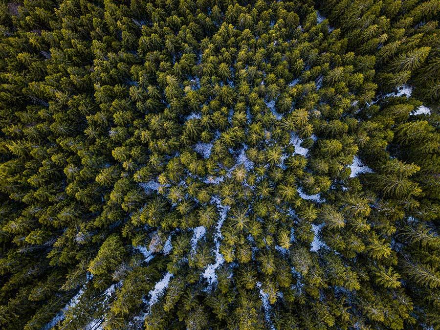 Vista aérea de la carretera Transfăgărășan.