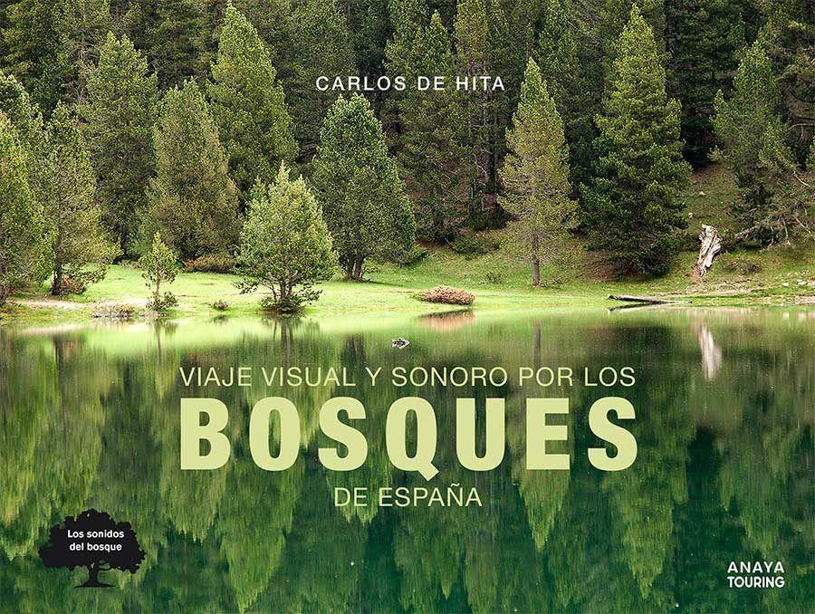 Viaje visual y sonoro por los bosques de Espana