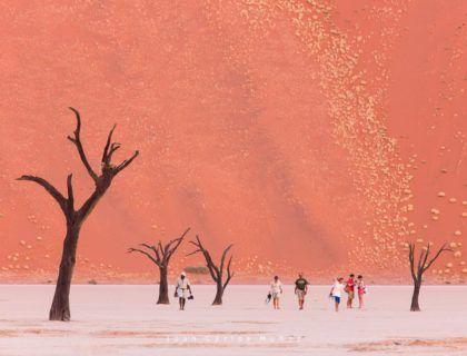 Deadvlei, Sossus Vlei, Desierto Namib, Namibia, Africa