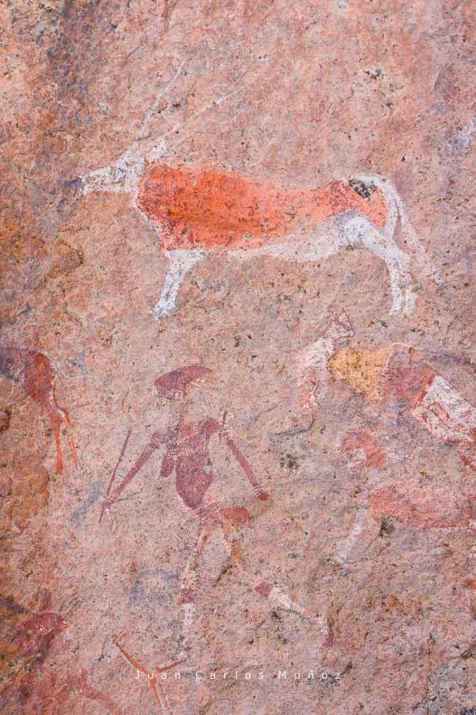 pinturas rupestres, desierto namibia