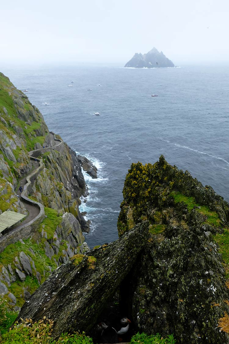 Skellig Michael, little skellig