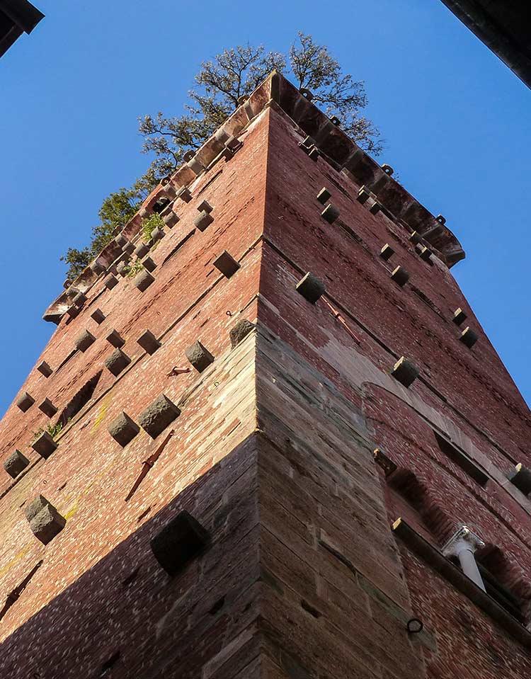 torre guinigui, viaje a lucca, italia etheria magazine