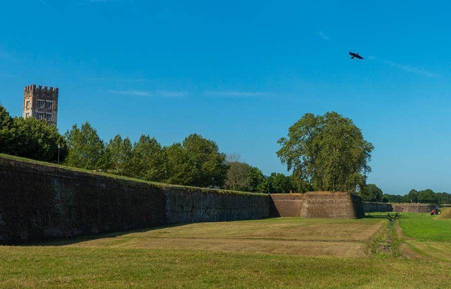 muralla medieval de lucca, que ver en lucca