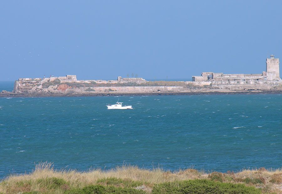 castillo sancti petri, paseos en barco, rutas ninos cadiz