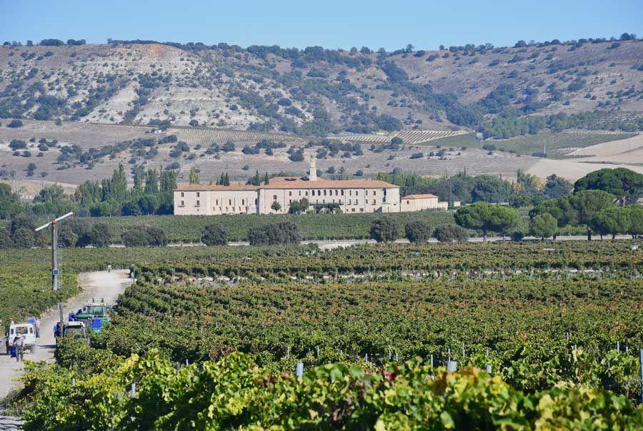 hoteles con encanto, vendimia, hoteles del vino, Abadía Retuerta