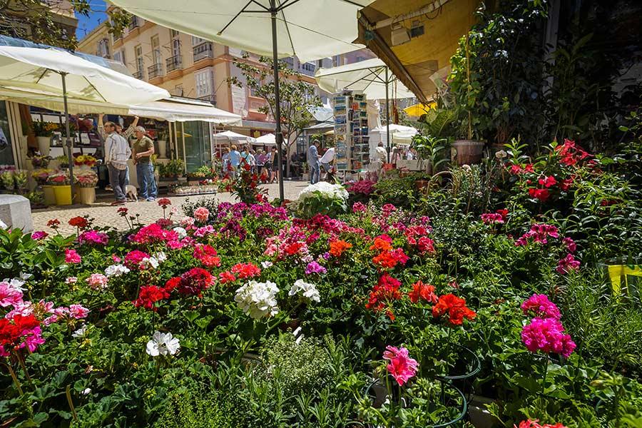 plaza flores cadiz, planes con ninos