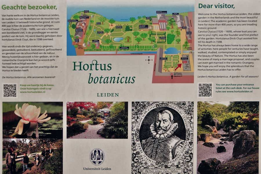 Hortus Botanicus, viaje leiden
