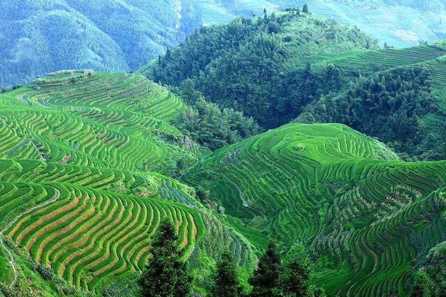 arrozales guangxi, trekking guangxi