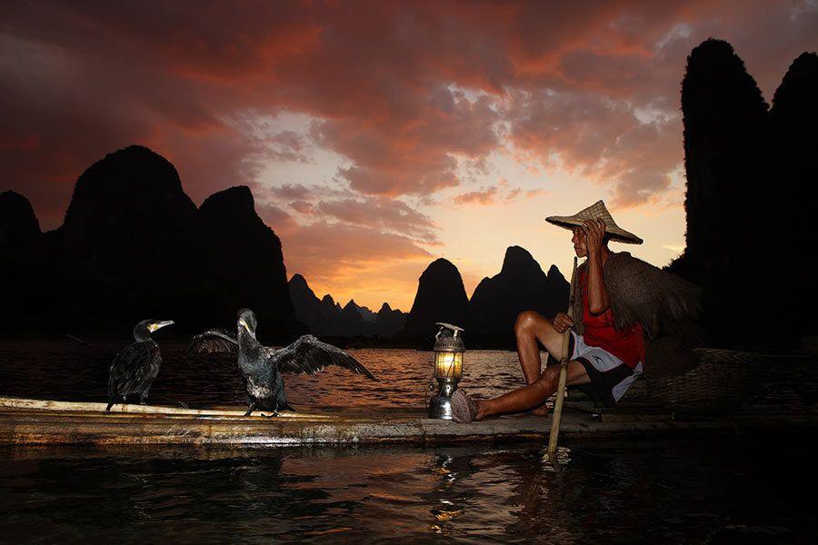 pescador con cormoranes, guangxi