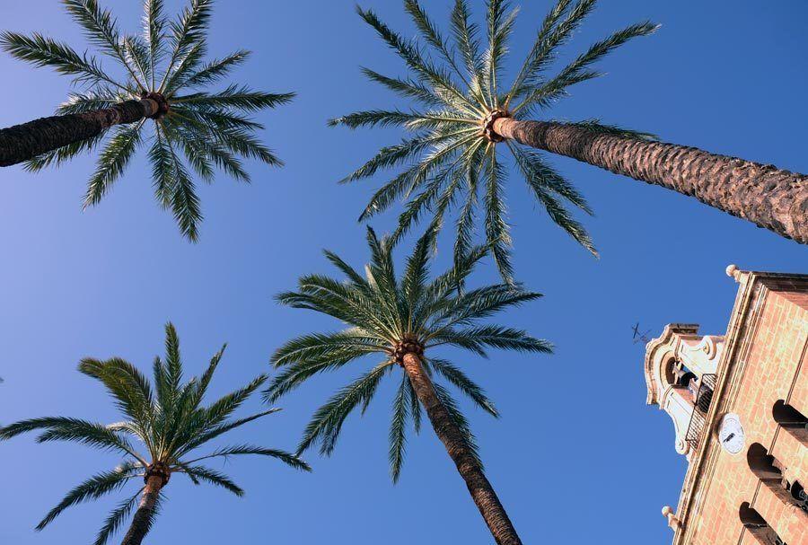 plaza catedral almeria, que ver almeria