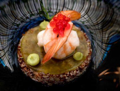 hotel palace, quinoa roja, gastrofestival