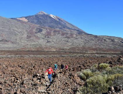 viajes a Canarias, viajes familiares a Tenerife, rutas desde el sur de Tenerife