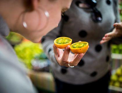 passifloras, viaje gourmet colombia