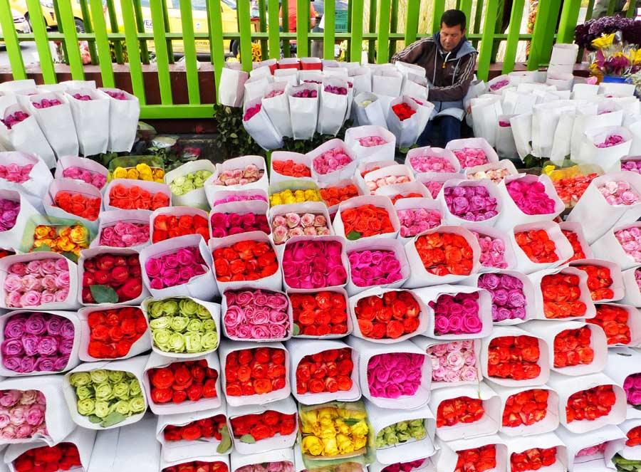 flores colombia, mercado paloquemao, viaje bogota mujeres