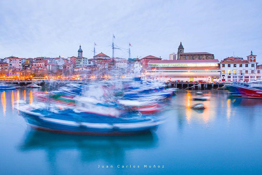 avistamiento de cetáceos, viajes al País Vasco, viajes de naturaleza