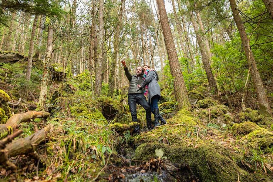 bosques de sligo, turismo irlanda