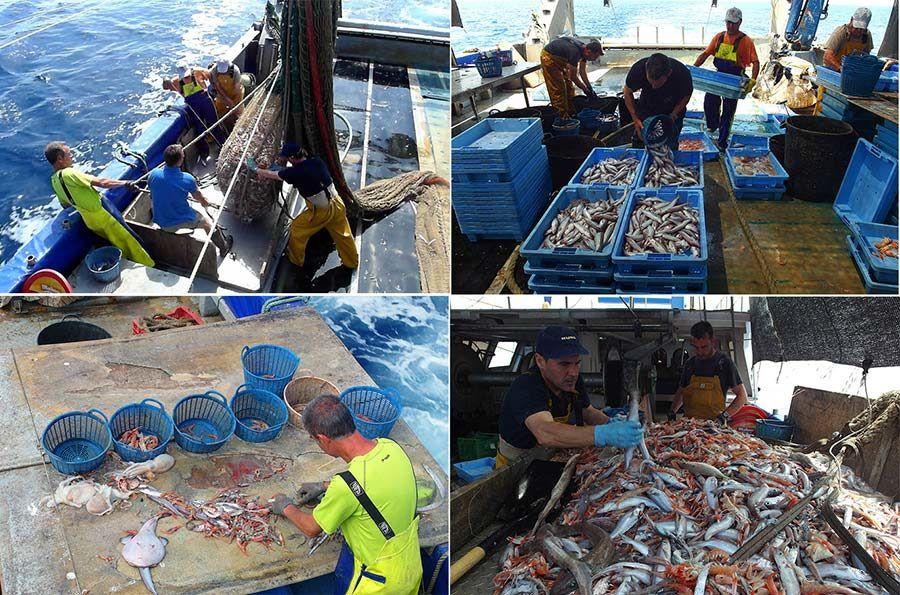 pescaturismo castellon, que hacer en castellon